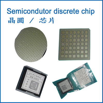 Semiconductor Wafer/Chip
